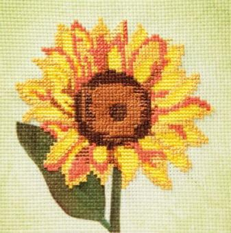 Stickpackung Grußkarte Sonnenblume